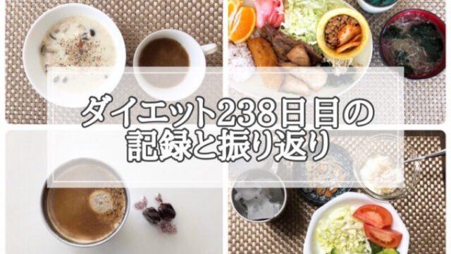 ゆる糖質制限238日目に食べたものの画像