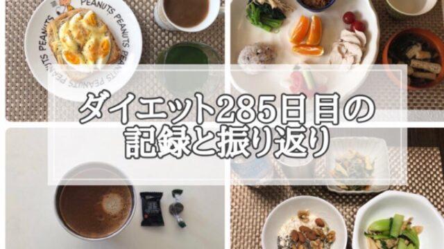 ゆる糖質制限ダイエット285日目に食べたものの画像