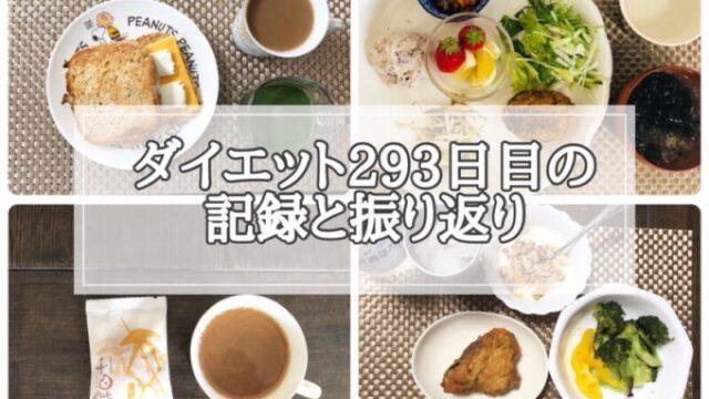 ゆる糖質制限ダイエット293日目に食べたものの画像