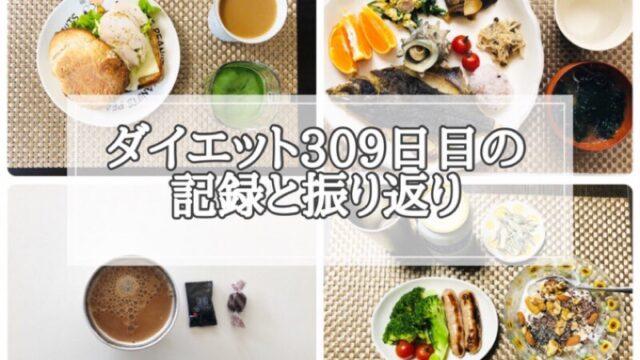 ゆる糖質制限ダイエット309日目に食べたものの画像
